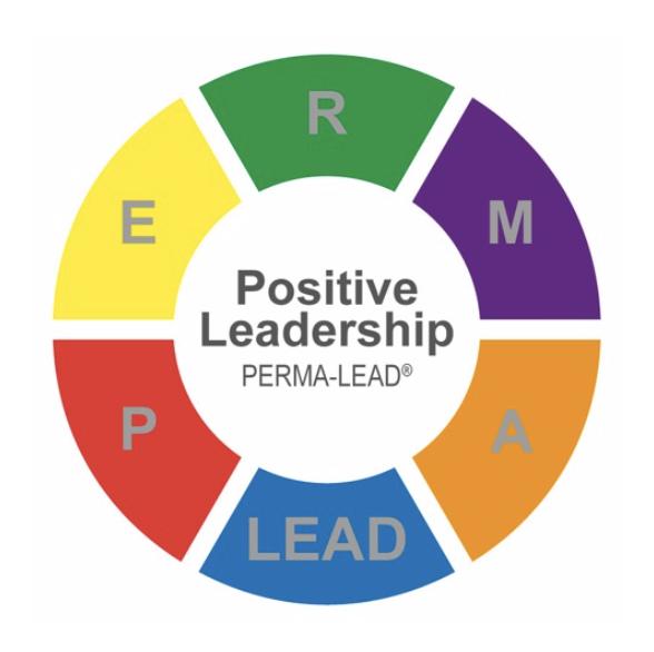 Positive Leadership PERMA-Lead Profiler